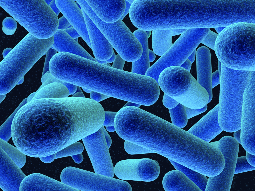 Listeria Disinfection and control